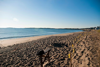 Ferry Beach-4