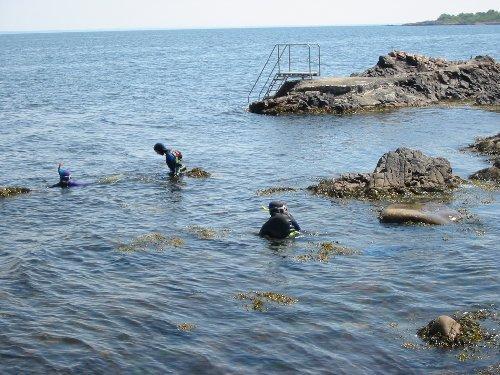 Första dyket blev vid Aralid