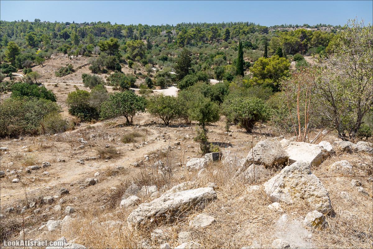 Парк Канада - пеший и бездорожный, неизвестный и интересный   LookAtIsrael.com - Фото путешествия по Израилю