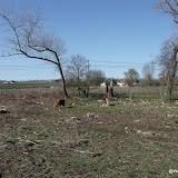 Westhoek Maart 2011 - 2011-03-19%2B14-56-50%2B-%2BDSCF2045.JPG