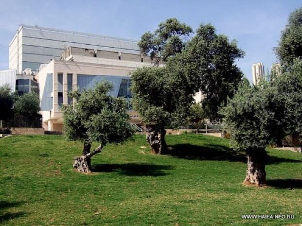 ADSCF3832 Haifa The Theater.jpg