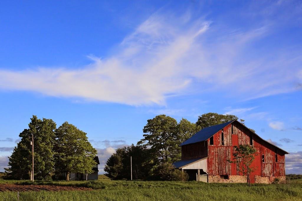 maple bay farm