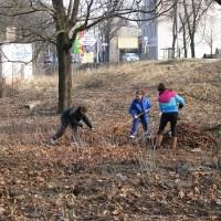 Prace na cmentarzu ewangelickim w Toruniu-Podgórzu (VIII)