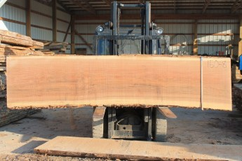 Black Oak 150-8  Length 12' Max Width (inches) 34 Min Width (inches) 31 Notes 10/4 Kiln dried