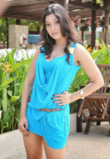 Payal Ghosh Wiki