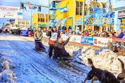 Iditarod2015_0348.JPG