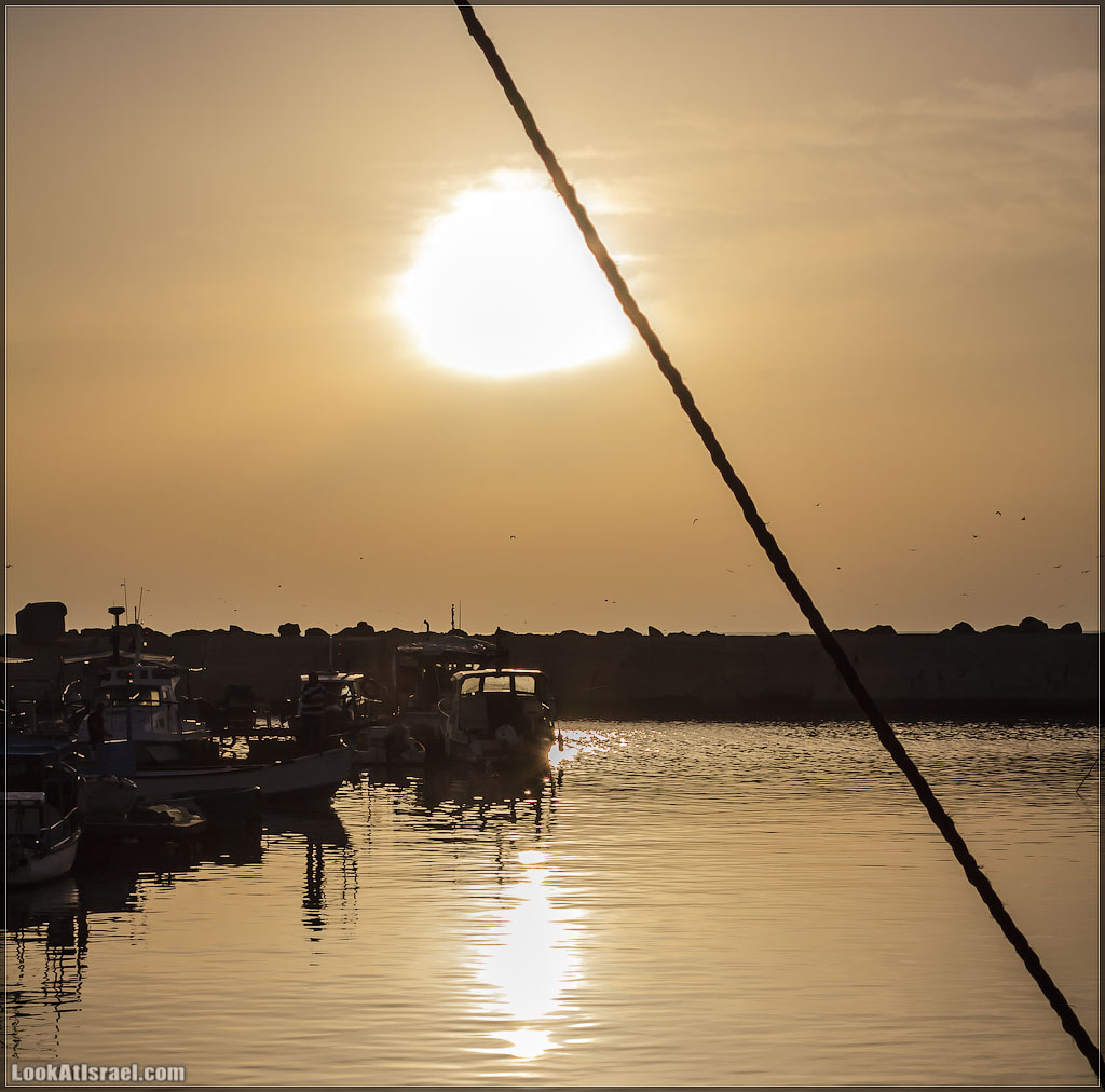 Порт Яффо | Jaffa Port | נמל יפו