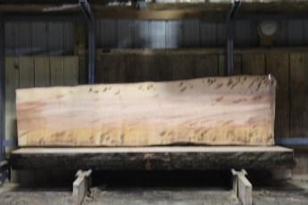 "600  Ambrosia Maple - 8 8/4x 35"" x 28"" Wide x  10'  Long"