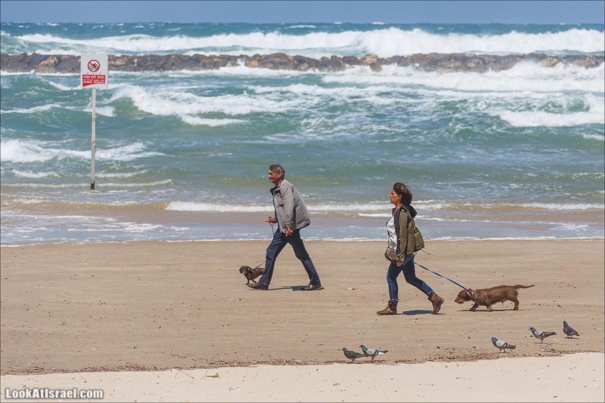 Люди, такие разные | LookAtIsrael.com - Фото путешествия по Израилю