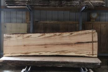 "576  Ambrosia Maple -7 10/4x 38"" x 31"" Wide x  10'  Long"