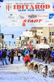 Iditarod2015_0222.JPG