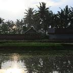 0431_Indonesien_Limberg.JPG