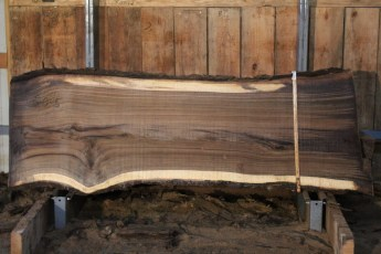 "550  Walnut -5 10/4 x  35"" x  29"" Wide x 8'  Long"