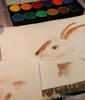 nastajanje zajčka (Ustvarjalni dnevi)