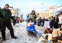 Iditarod2015_0305.JPG