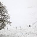 Intermediate 1st - Snow Scene_Barry Saunders.jpg