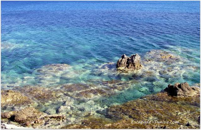 Tunisie El Haouaria côte sauvage
