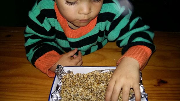justellabella seed bar recipe