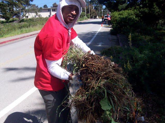 IVLP 2010 - Volunteer Work at Presidio Trust - 100_1416.JPG