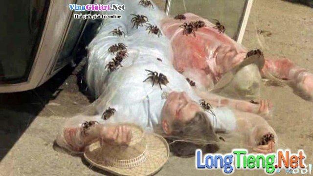 Xem Phim Vương Quốc Nhện - Kingdom Of The Spiders - phimtm.com - Ảnh 4