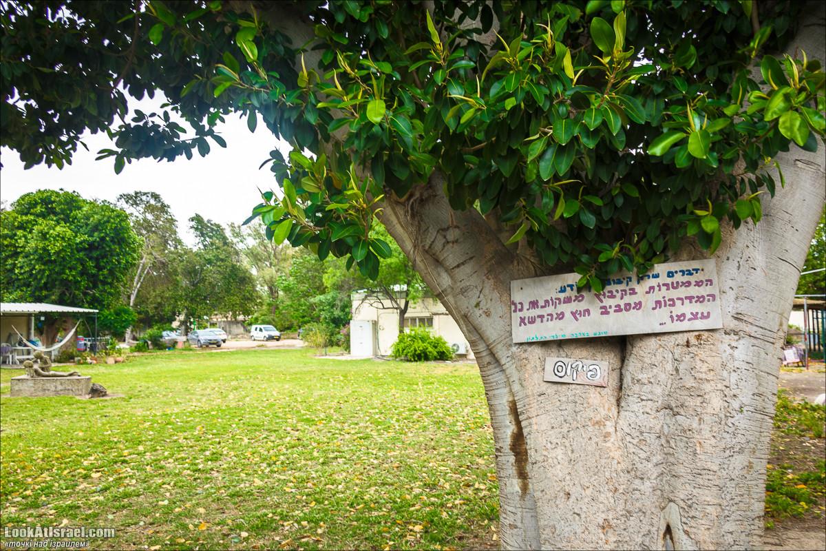 Серия рассказов о городах Израиля «Точки над i» - Решафим   Points over Israel - Reshafim   LookAtIsrael.com - Фото путешествия по Израилю