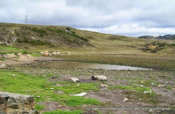 Humedal Laguna Encantada, Junio 2014