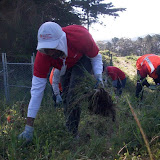 IVLP 2010 - Volunteer Work at Presidio Trust - 100_1408.JPG