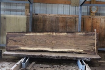 "571  Walnut -6 10/4 x 31"" x  24"" Wide x  10'  Long"