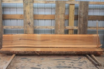 "Elm 288-4  Length 9' 6"" Max Width (inches) 16 Min Width (inches) 15 Thickness 6/4  Notes :"