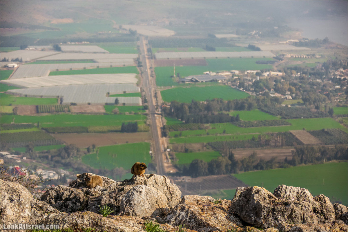 Гора Арбель | Mount Arbel | צוק ארבל | LookAtIsrael.com - Фото путешествия по Израилю