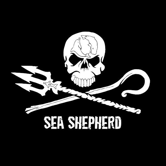 SEA SHEPHERD CONSERVATION SOCIETY - Google+