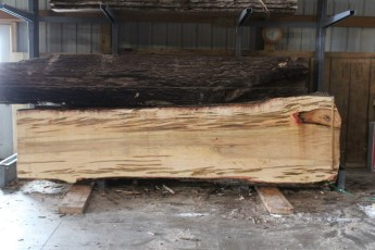 "575  Ambrosia Maple -1 10/4x 42"" x 33"" Wide x  12'  Long"