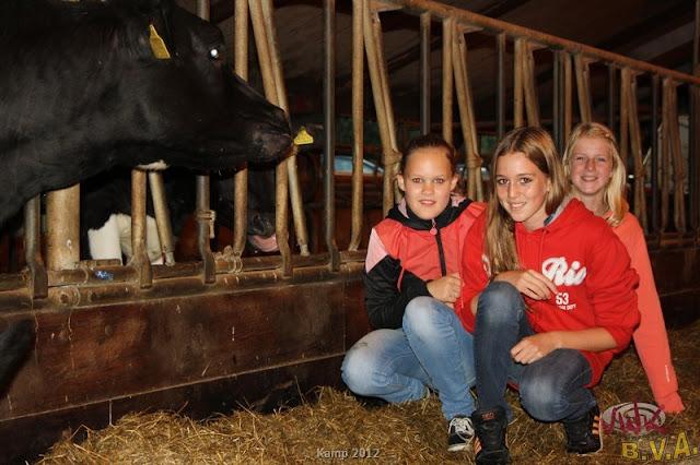 BVA / VWK kamp 2012 - kamp201200024.jpg