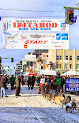 Iditarod2015_0338.JPG