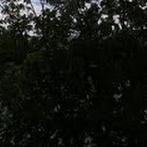 PanoramicaKrakow4.jpg