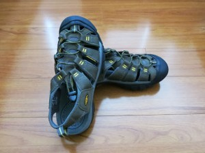 On sale for $69.99 (great price), this was the only pair in my size at the REI in San Diego.