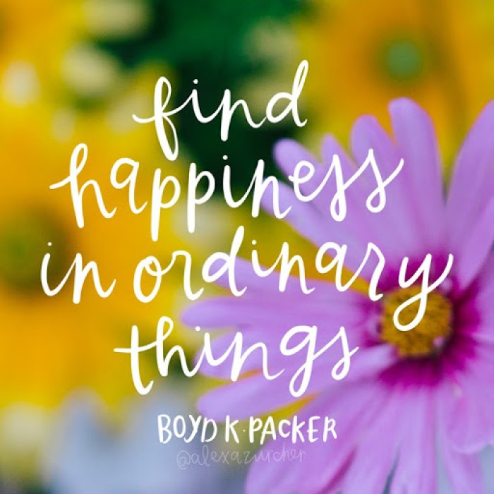 1 happiness in ordinary things