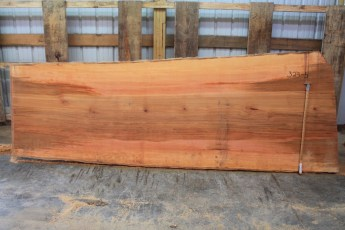Sycamore 329-5  Length 11', Max Width (inches) 48 Min Width (inches) 38 Thickness 10/4  Notes : Kiln Dried