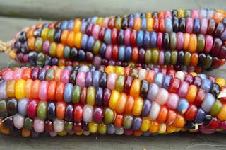 Glass pearl corn