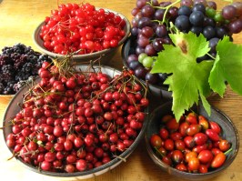 antioxidant food and health benefits