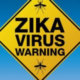 Zika could affect the 2016  Europe and Africa,Olympics