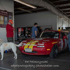 2018 Sahlens Champyard Dog at the Glen - Ed Palaszynski Photos - _DSC3902.jpg