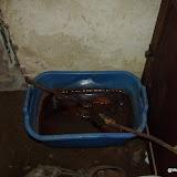 Westhoek Maart 2011 - 2011-03-19%2B11-29-59%2B-%2BDSCF1980.JPG