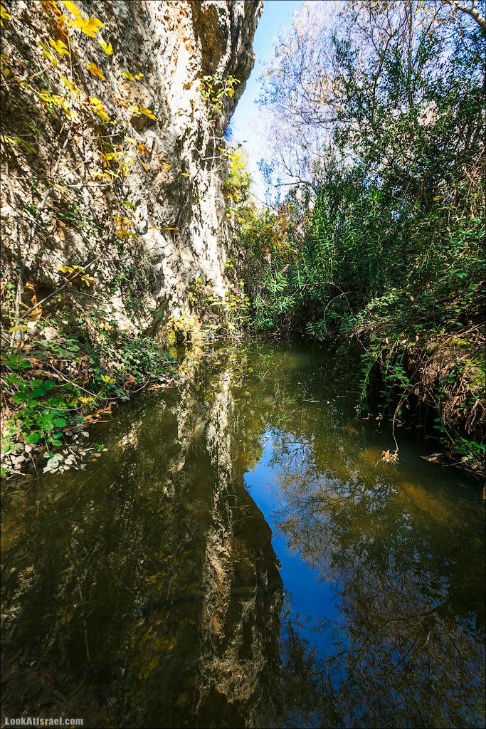 Водопады ручья Аюн (Йион) | Ayun woterfalls | נחל עיון | LookAtIsrael.com - Фото путешествия по Израилю