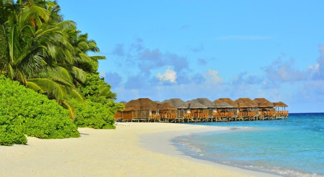 Fihalhohi Island Resort Booking