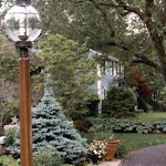 images-Landscape Lighting and Illumination-illum_2.jpg