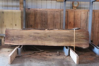 "572  Walnut -3 8/4 x 28"" x  22"" Wide x  10'  Long"