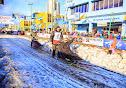 Iditarod2015_0350.JPG