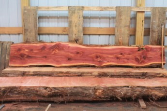 "Cedar 282-2  Length 10' 6"" Max Width (inches) 20 Min Width (inches) 14 Thickness 6/4  Notes : Kiln Dried"
