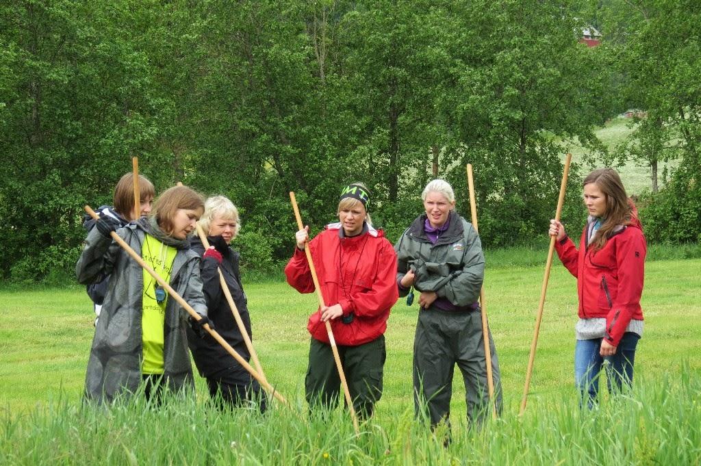 Kosidba u Norveskoj- Turisticka organizacija opštine Ljig184